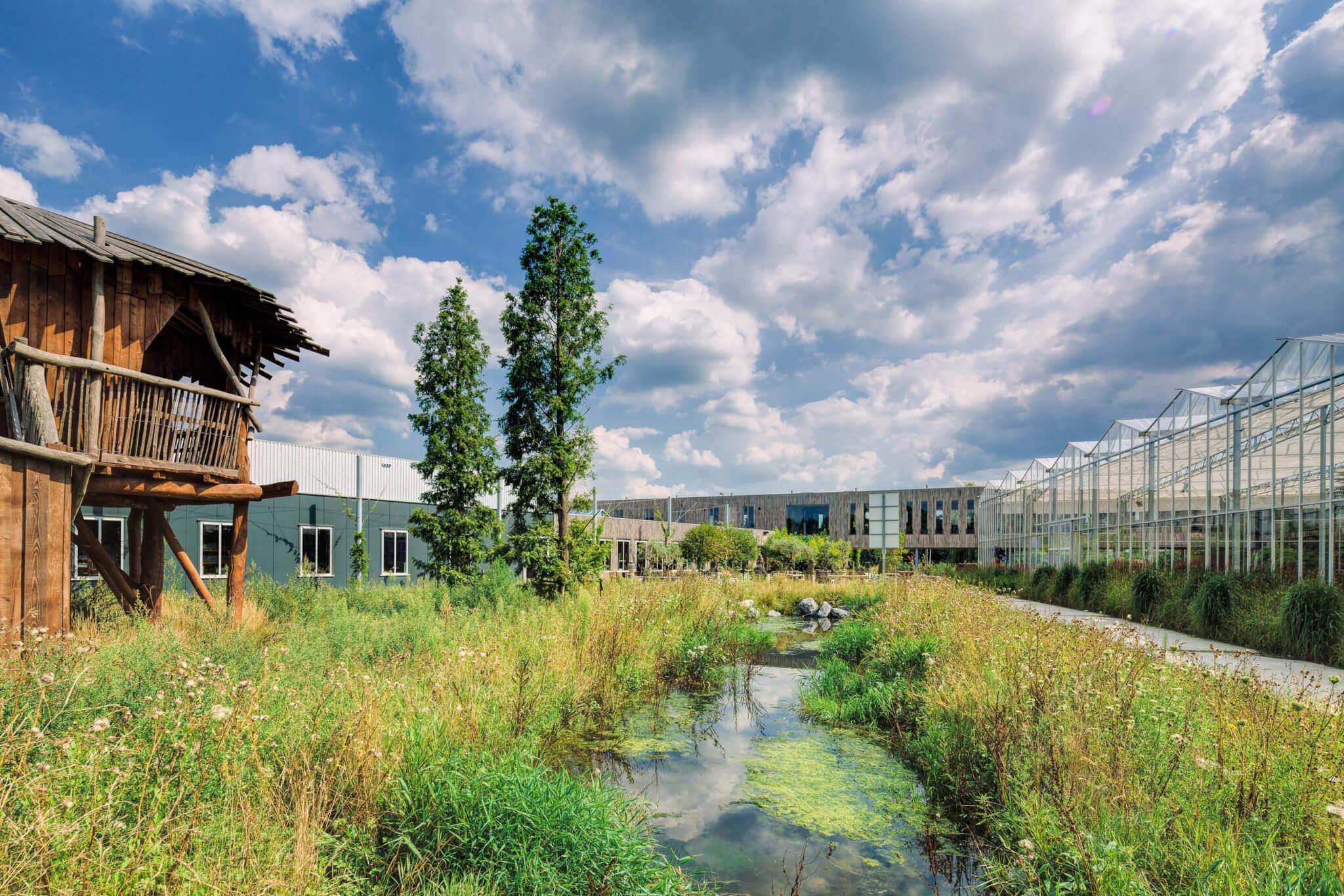 duurzaam ecologie co-creatie eco-chique transport logistiek kantoor campus binnenwereld hout Robinia groen water retail werkplek Eersel natuurgebied werken in het groen