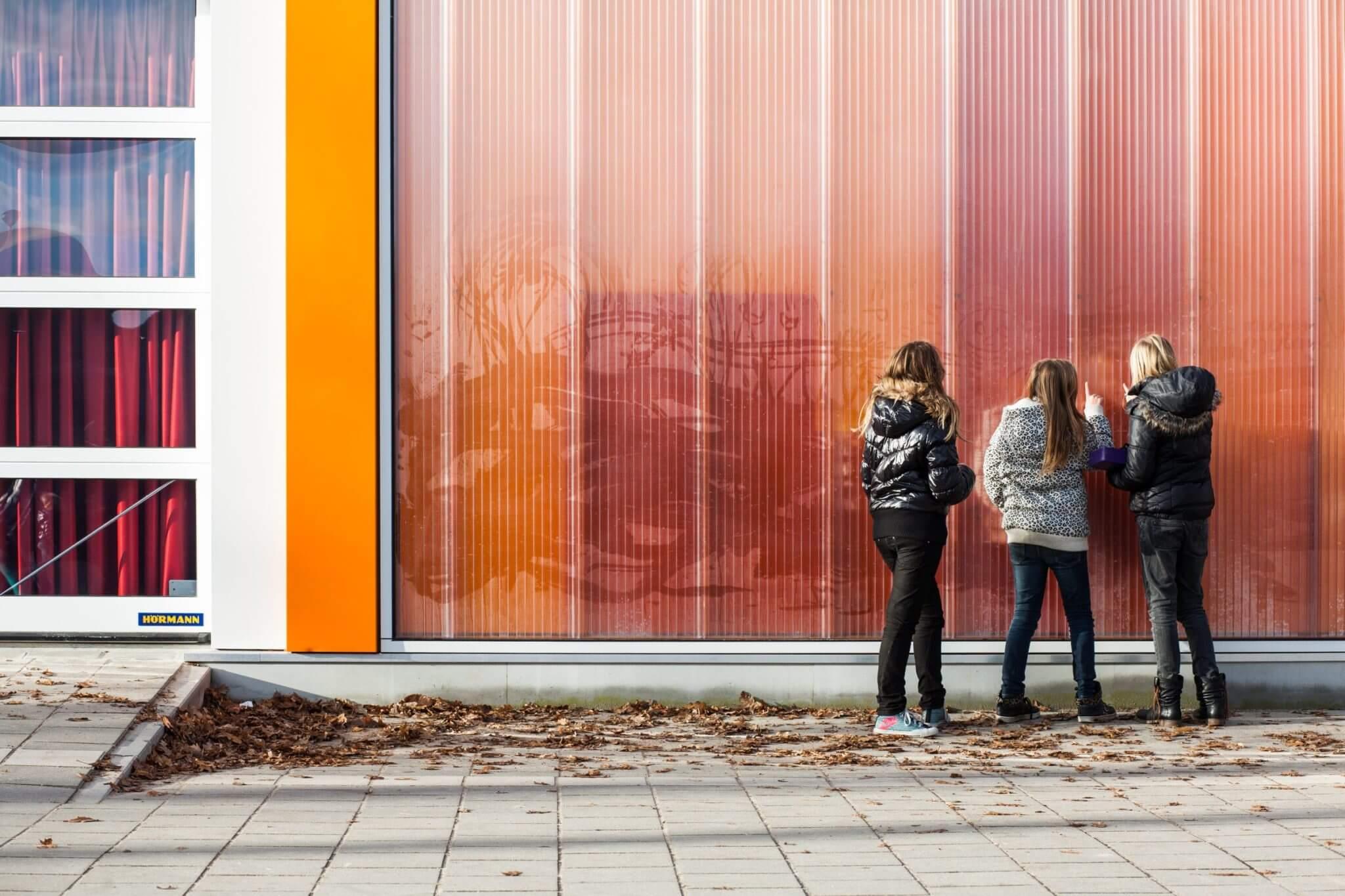 Rodeca Mierlo hout Qliq Helmond kunst portfolio Folie Brabant RAL 2000 roldeur
